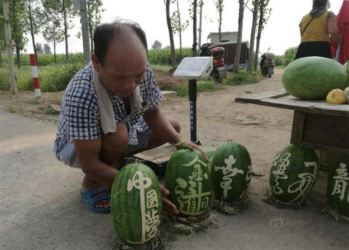 """农民西瓜上写书法成""""网红"""" 11天卖6千斤"""