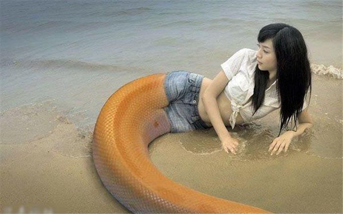 史上最全美女蛇惊艳图片集:人头蛇身的妖物美人
