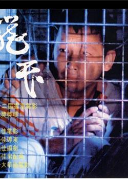 在香港,有二十万人住在笼子和棺材里