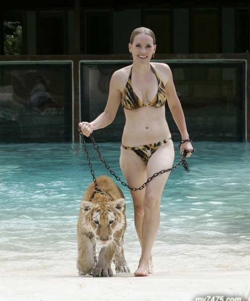 泳池里的美女与野兽