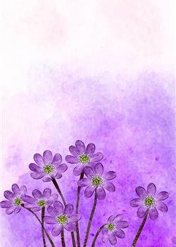手绘水彩花卉背景 手机壁纸