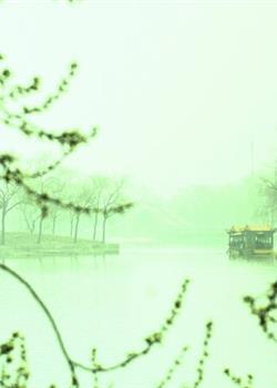 摄影图片 弥天大雾的颐和园