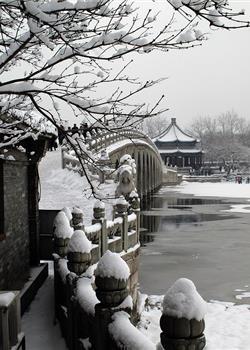 摄影图片雪后随拍景色柔和美好