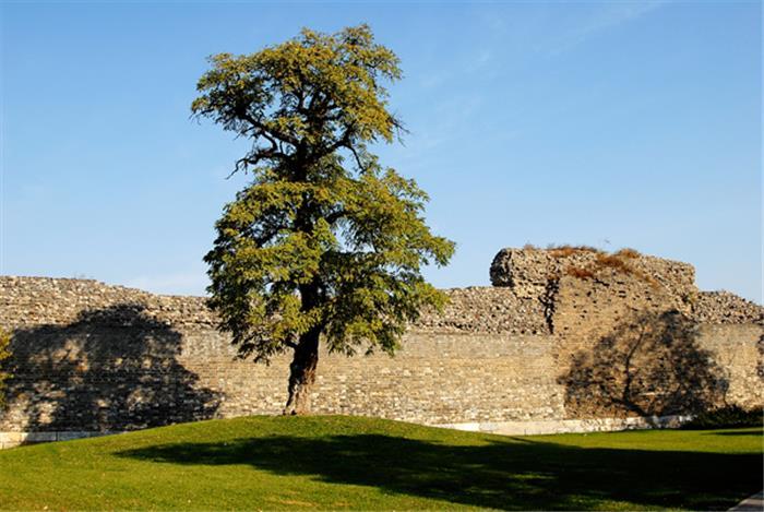 摄影图片 漫步历史悠久的明城墙遗址公园
