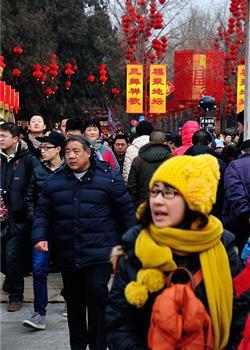 摄影图片 北京特色 就是人多(拍自庙会)