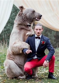 """俄罗斯情侣结婚 邀请棕熊当""""证婚人"""""""