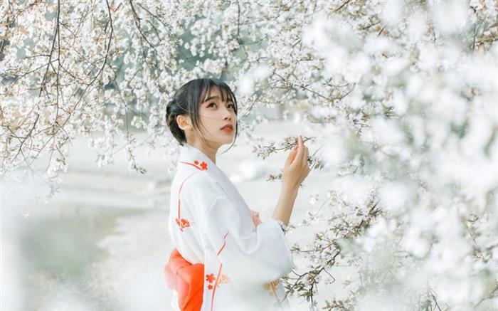 人比花娇的日本小妞精美和服曼妙身姿清纯唯美图片