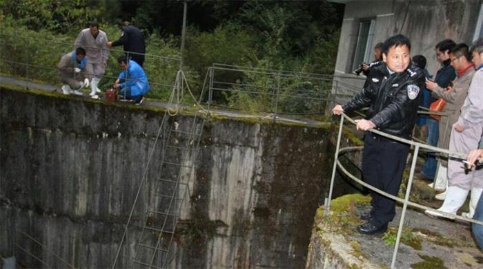 野生大熊猫误入水电站落水 3小时成功救援
